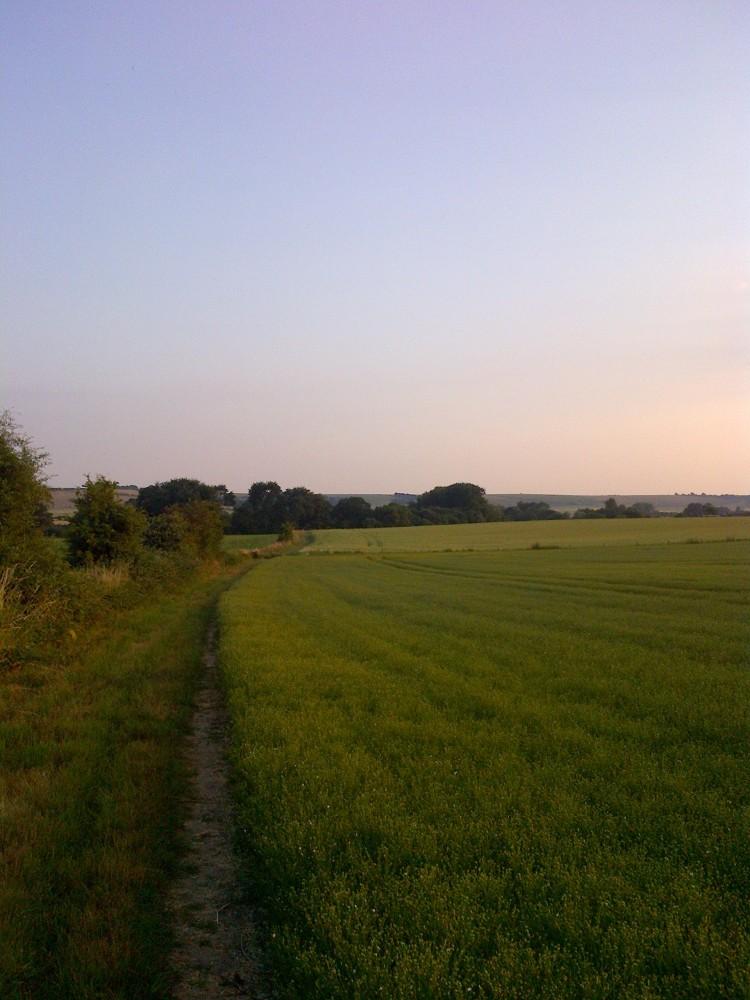 Wiltshire-20130717-00834