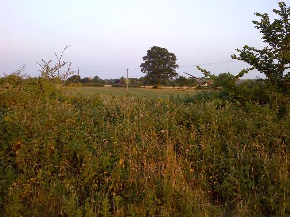 Wiltshire-20130717-00839